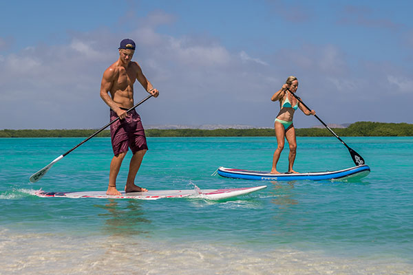 Stand Up Paddle Board