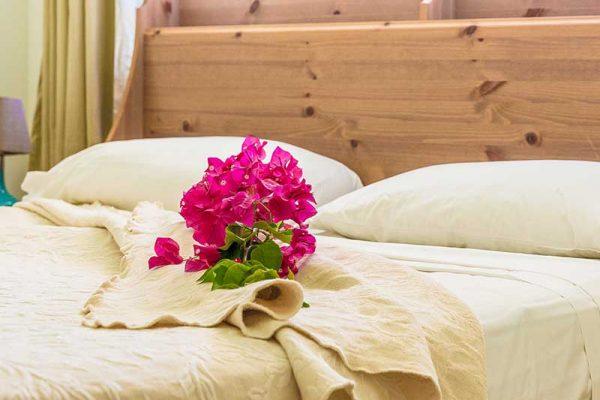 1 bedroom chalet 4